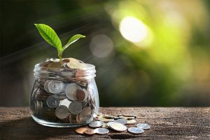Concept of a jar of coins with a plant growing out of it